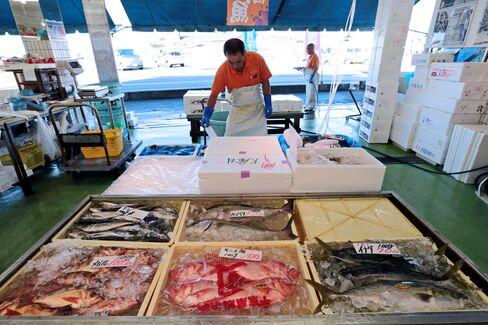 Fishing Port in Fukushima