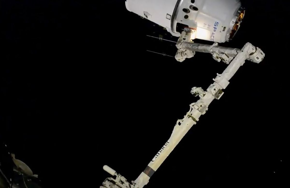 ISS Gets 'Mighty Mice,' Worms, Robot in SpaceX Delivery