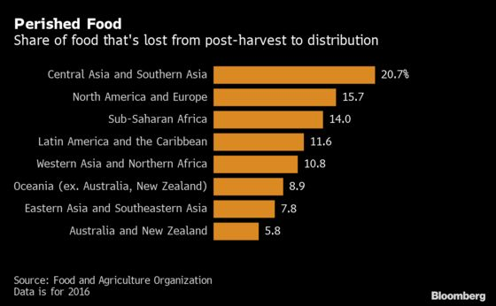The World Loses $400 Billion of Food Before It Reaches Stores
