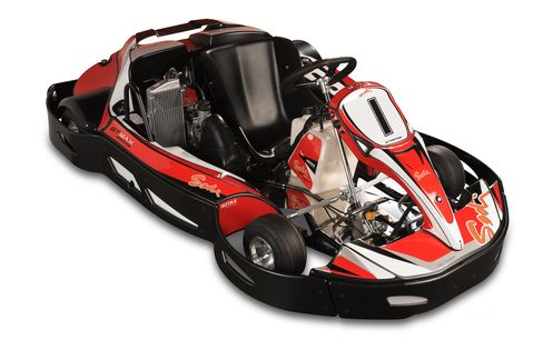 A model similar to the ranch's go-karts.