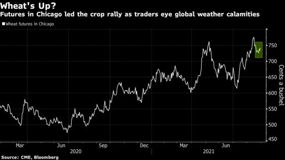 Wheat Gains as Traders Weigh Export Prospects Amid Hurricane Ida