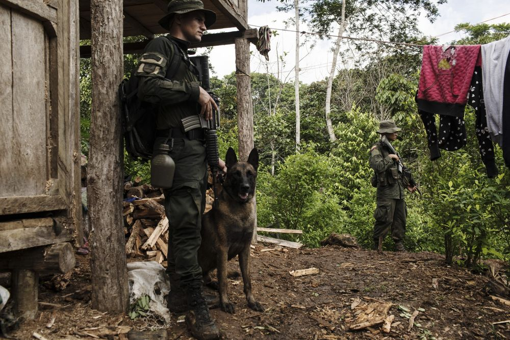 Mexican Drug Cartels Now Make Their Own Cocaine, Colombia Says
