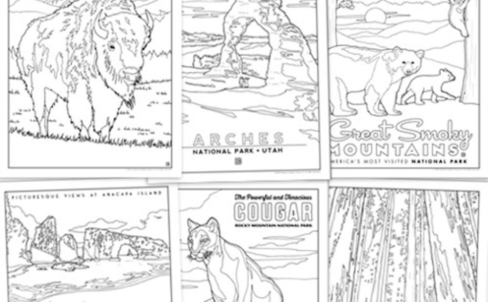 59 Illustrated National Parks Coloring Book Now Available From Anderson Design Group Bloomberg