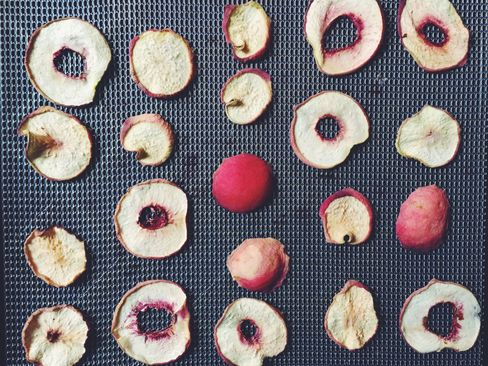 Sliced nectarines are Dehydrating 101.