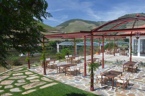 Quinta do Bomfim Vineyard