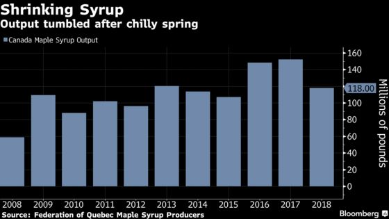 Canada's Cold Spring Means 22% Drop for Maple Syrup Production