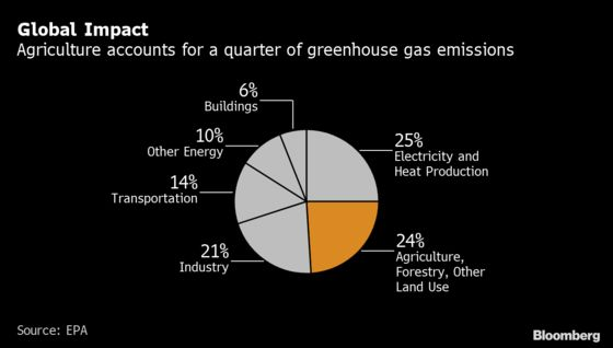 After Taking on Coal and Oil, Climate Investors Target Meat Next