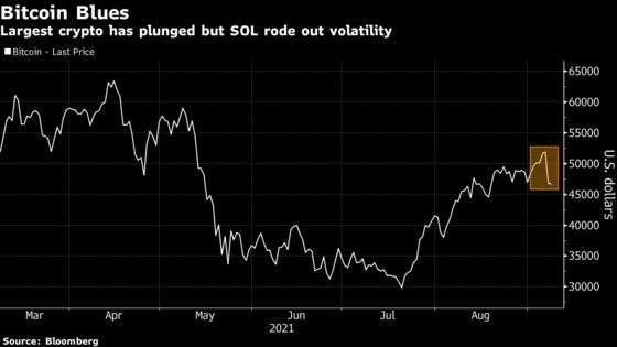 Solana's SOL Token Weathers the Crypto Tumble Sparked by Bitcoin
