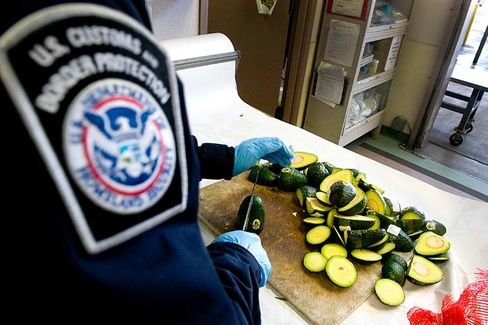 U.S. Food-Safety Inspectors Miss Most Imports. Why Not Outsource It?
