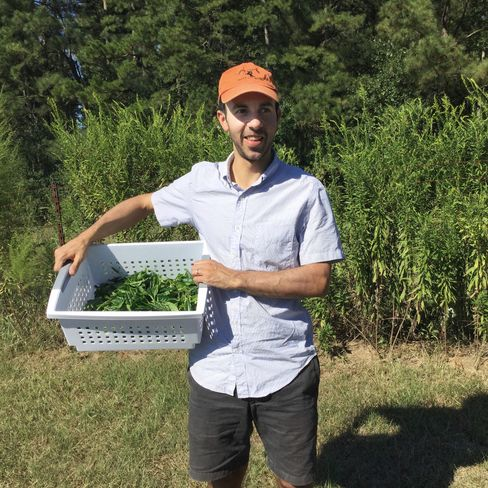 David Bromwich, of the soon-to-be-launched Bromwich Tea, during his first production run in Mississippi this past September.