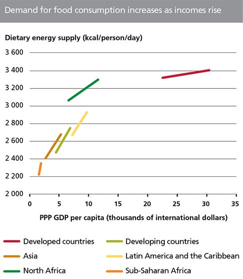 PPP = purchasing power parity. Regional aggregates include only developing countries. Source: FAO and World Bank