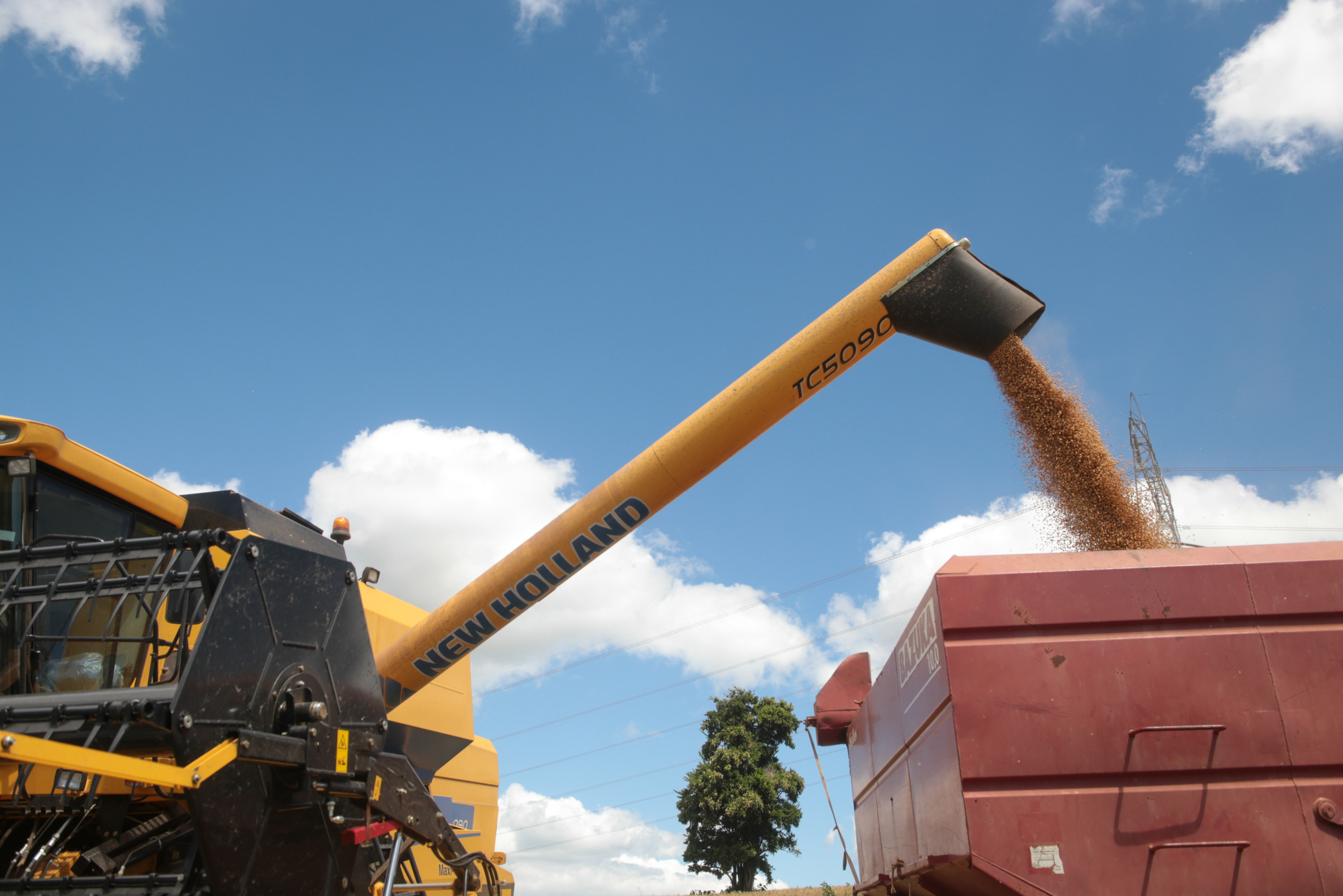 Soybeans are loaded into a truck.