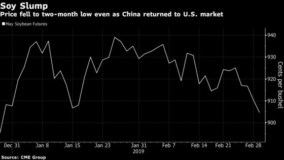 China Looks to Buy U.S. Soybeans But No Deals Are Being Done