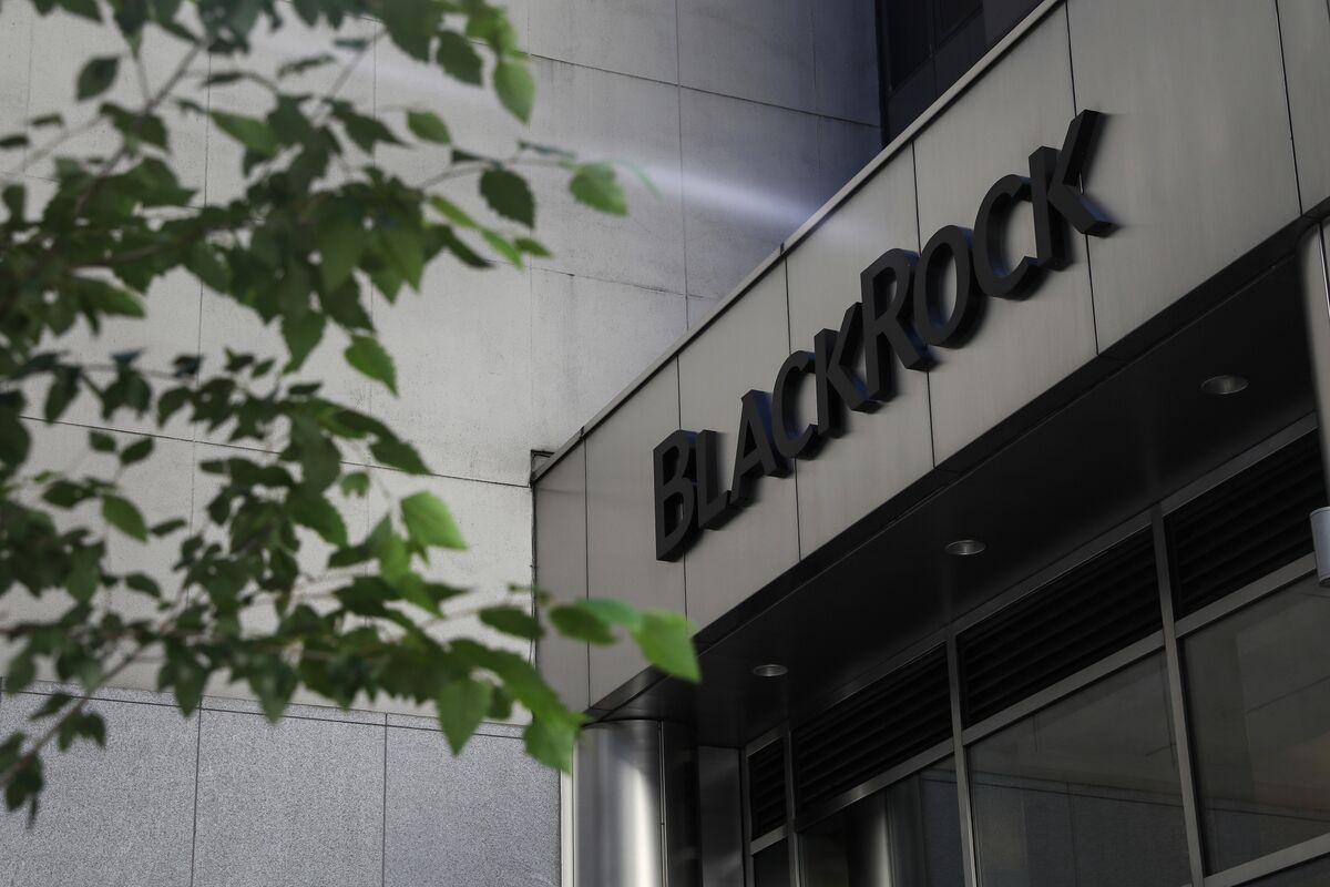Half BlackRock's Clients Looking to Cut Stocks Exposure in 2019