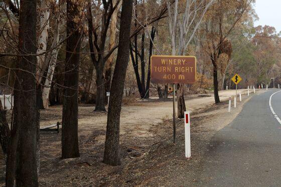 Wildfire Smoke Sparks Worries for Australian Wine Growers