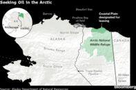 Seeking Oil in the Arctic