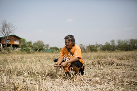 "Rice farmer Sam-oil Pakpraek, 54, said she didn't see what more the government could do. ""The government can't make water by themselves."""