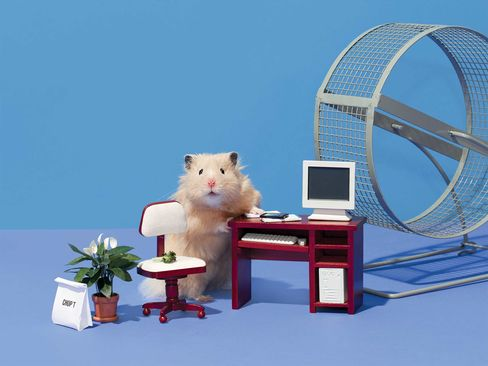Teddy is an 8-month-old professional hamster model and actor who works about 25 hours per week.
