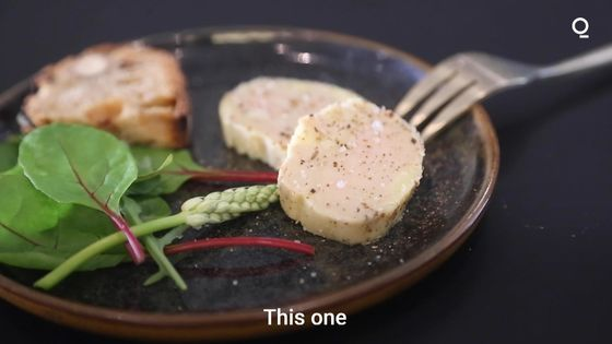 Lab-Grown Foie Gras Receives French Government Support, Tastes Delicious