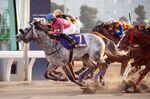 昨年12月29日に行われた「東京大賞典」レース