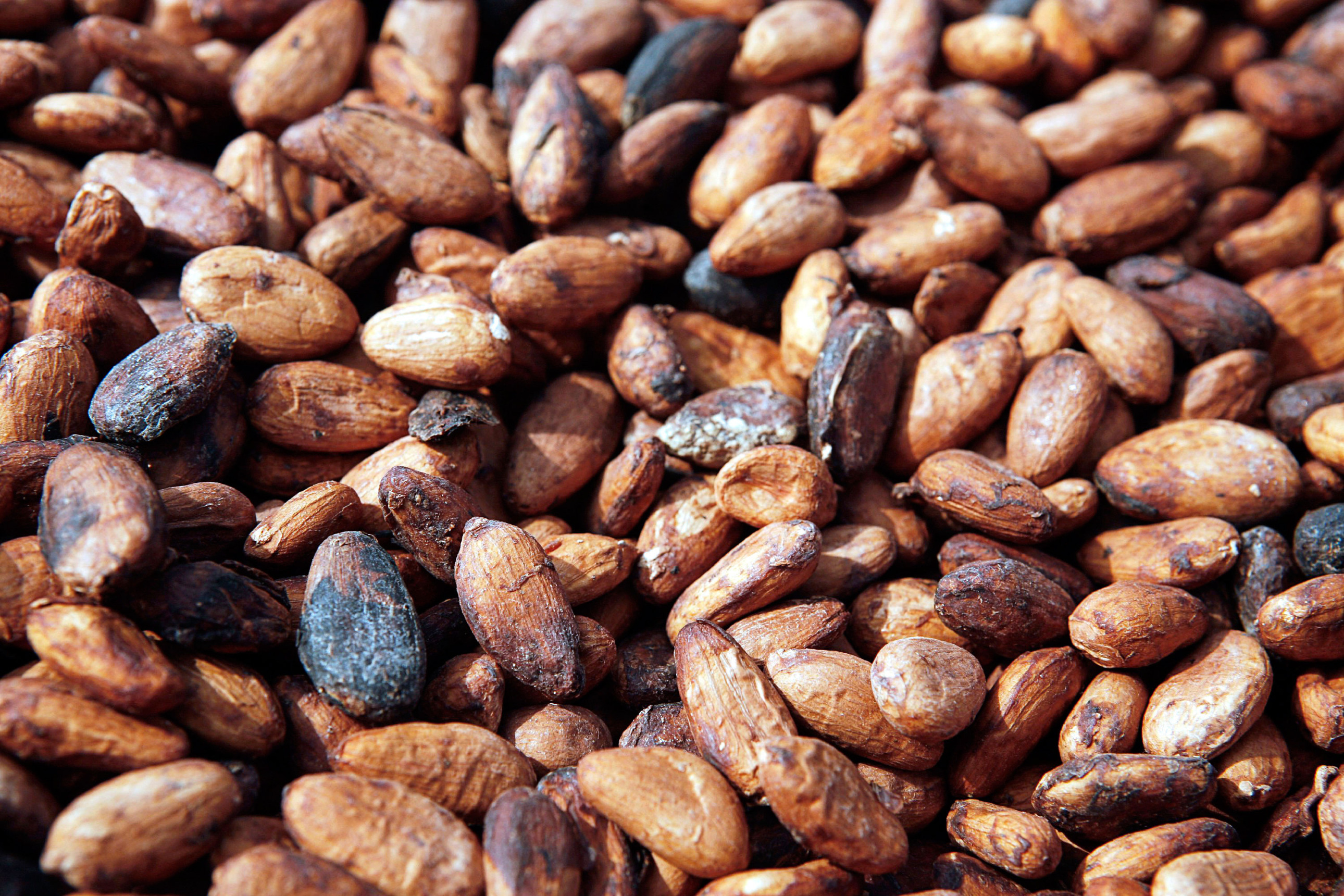 It's Time to Load Up on Chocolates Before Cocoa Rebounds