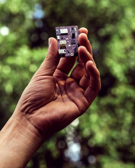 The $250 Biohack That's Revolutionizing Life With Diabetes
