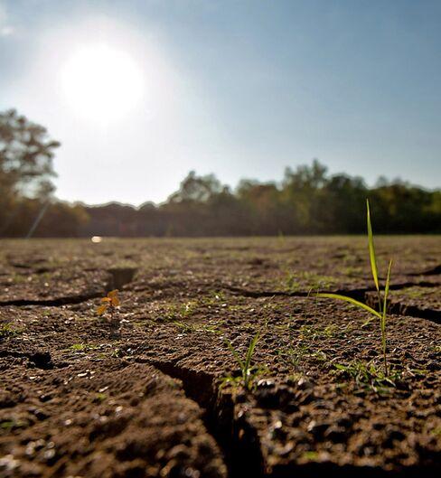 Energy Week Ahead: Heated Senate Climate-Change Debate Forecast