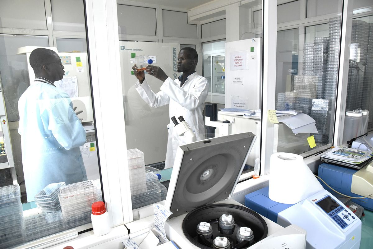 Even Without a Case, Africa May be a Big Victim of Coronavirus