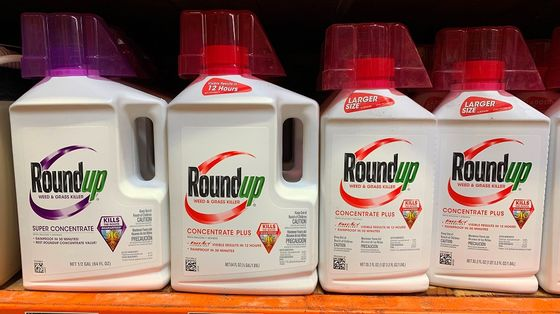 Bayer Shares Jump on Report of Potential Roundup Settlement