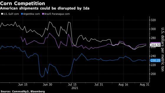 Hurricane Ida Threatens U.S. Grain Exports If Disruptions Linger