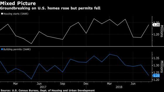U.S. Housing Starts Rise More Than Forecast While Permits Slump