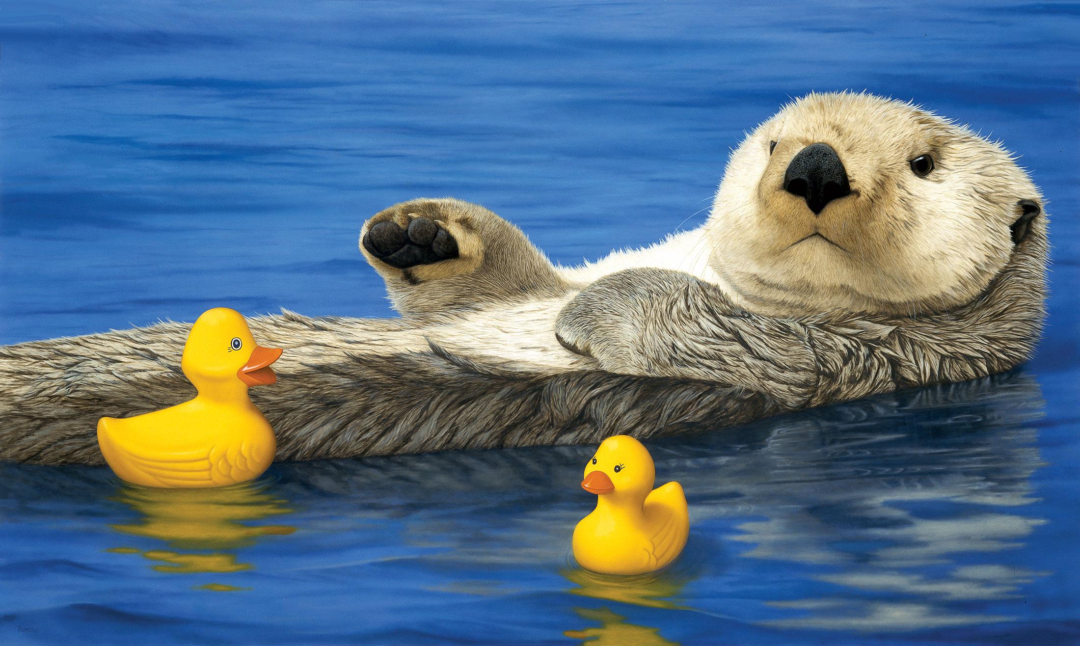 'Sea Otter with Ducks,' 1997