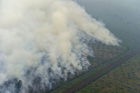 Southeast Asia has been enveloped in haze from agricultural fires in Indonesia, prompting flight cancellations, closing schools and raising fears the Singapore Formula One race could be affected.