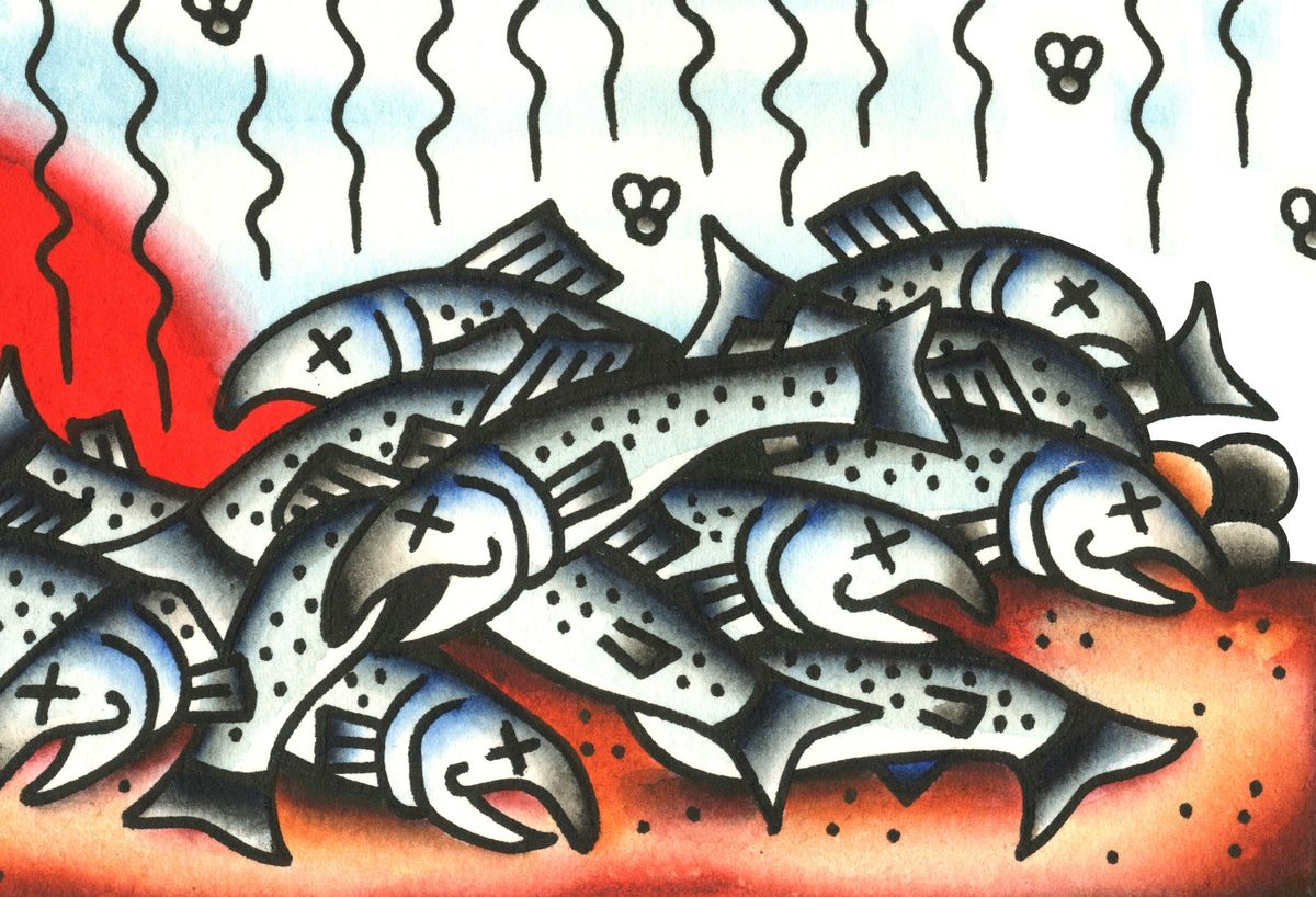 Is It Too Late to Save Wild Salmon?