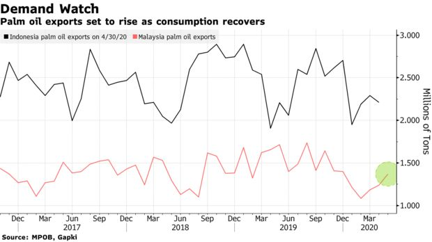 Palm oil exports set to rise as consumption recovers