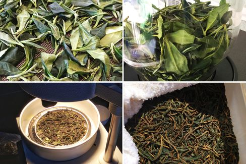 Tea leaves clockwise from top left: Withering on mesh trays, drying in small batches, being tested for moisture, and fermenting under a wet towel.