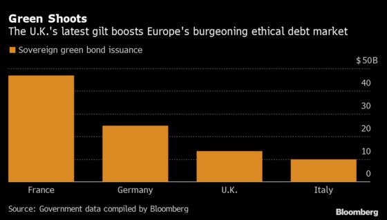 U.K. Debt Chief Embraces More Green Funding After Cutting Costs