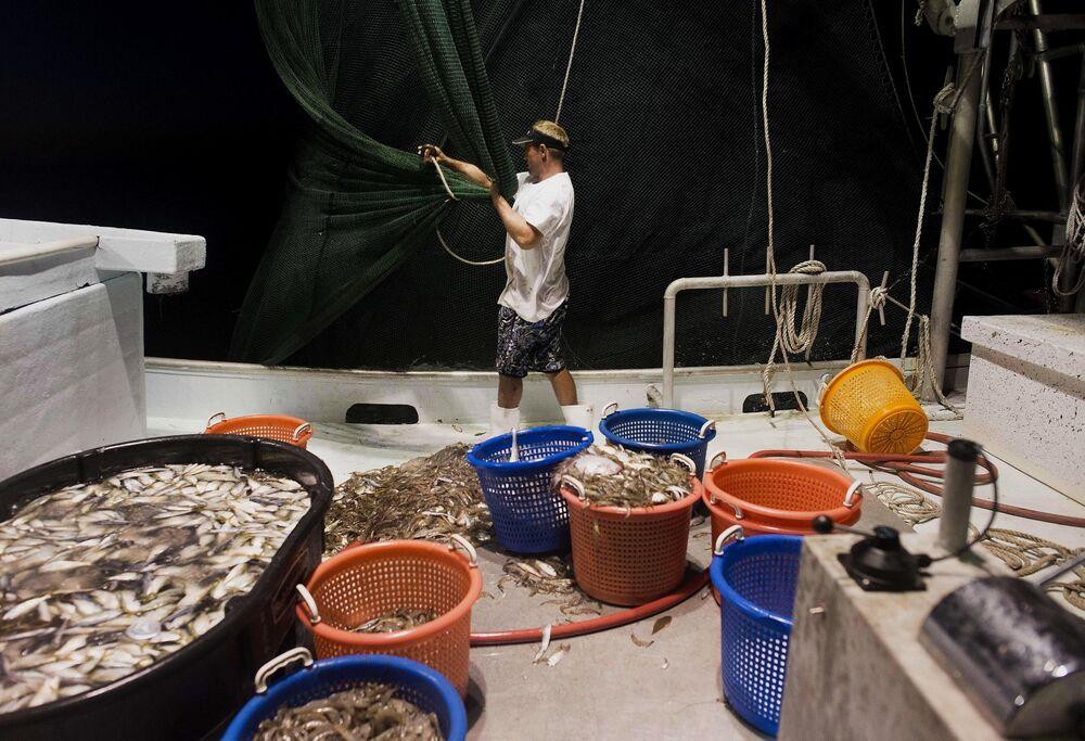 Tropical Storm Barry Brings Shrimp Fishing to Halt in U.S. Gulf