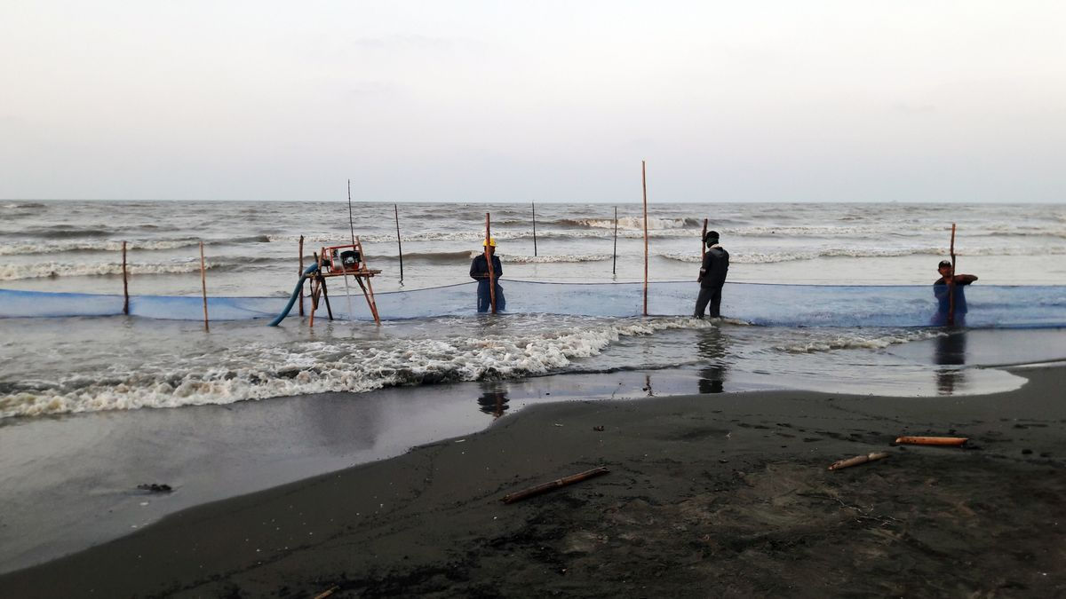 Pertamina Boosts Efforts to Clean Up Java Sea After Oil Spill