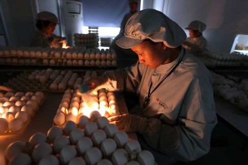 Bird Flu Surge in China Spurs H7N9 Pandemic Vaccine Preparations