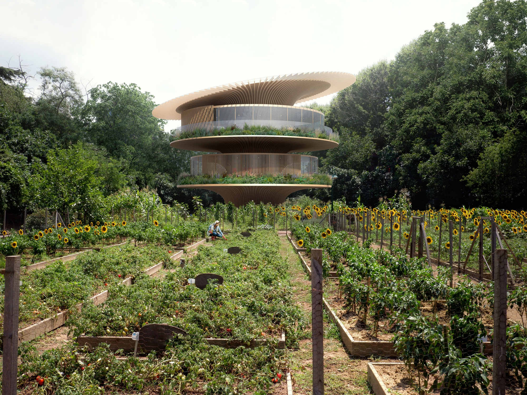 Architects Imagine the Dream Homes of Europe's Green Future