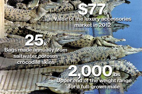 A Crocodile's Bumpy Road From Farm to Handbag