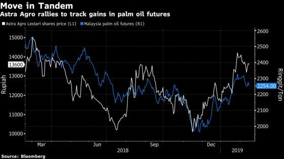 Palm Oil's Best Start Since 2016 Still Has Legs, Top Grower Says