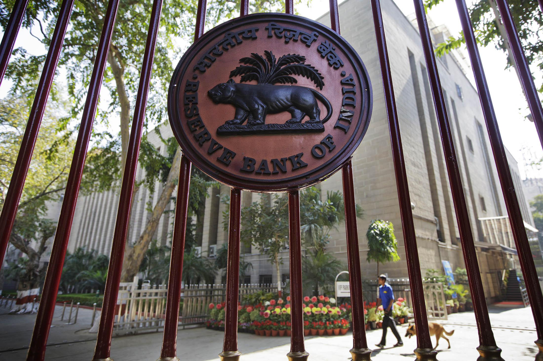 India Rate Decision Guide: Learning to Read the Monetary Panel - Bloomberg