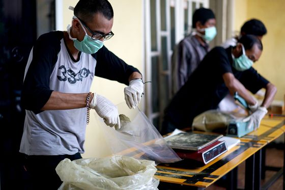 Thailand Legalizing Opioid-Like Herb Spurs Rush of Online Sales