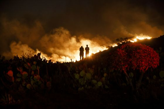 California Faces More Wind and Fire Risk as Current Threat Eases