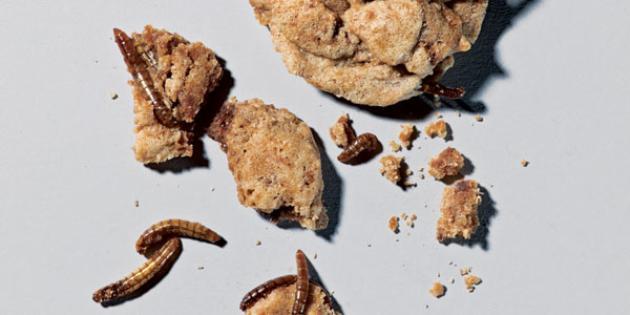 Bug Bite Cookies