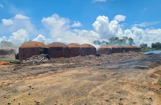 Brazil Rescues 66 Charcoal Workers From Slave-Like Conditions