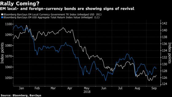 Investor Who Called End of Emerging Bond Rally Now Sees Rebound