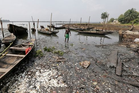 Dead fish lie on the polluted shoreline in Bodo.
